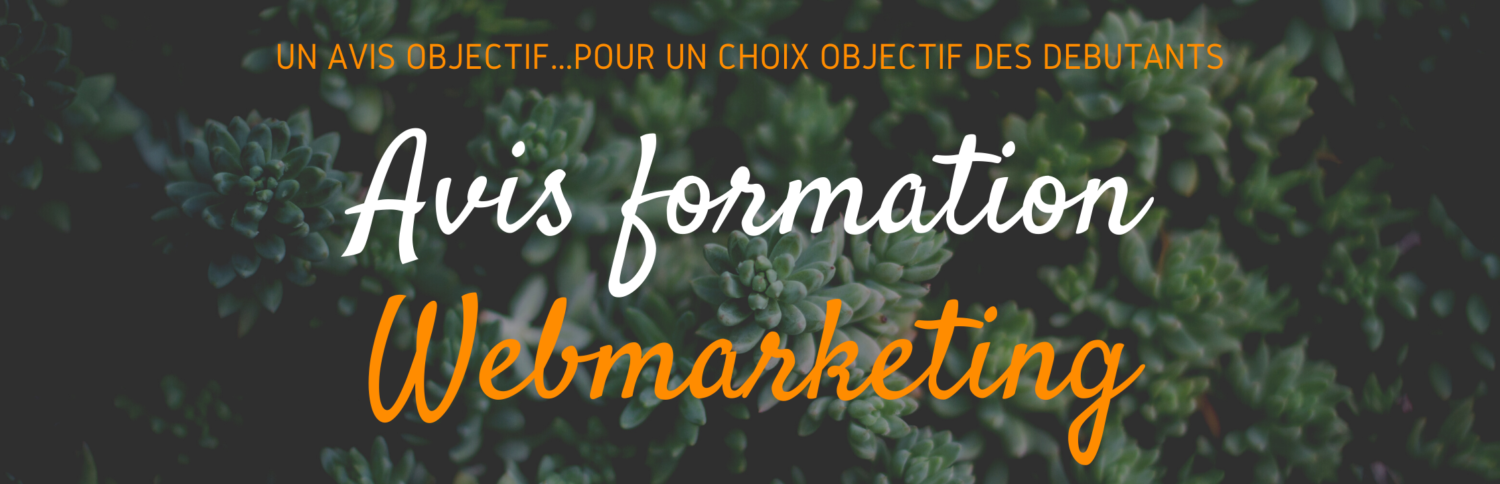 Avis Formation Web Marketing pour Débutant
