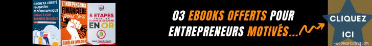 03 Ebooks pour créer votre indépendance financière et géographique